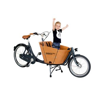 Family Rider Babboe MINI